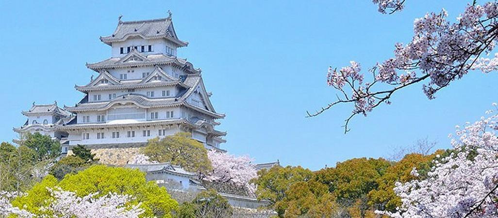 大阪、京都、奈良、富士山、东京、白川乡温泉双飞8日跟团游<【7+1】全方位玩转日本(扬州经停)>