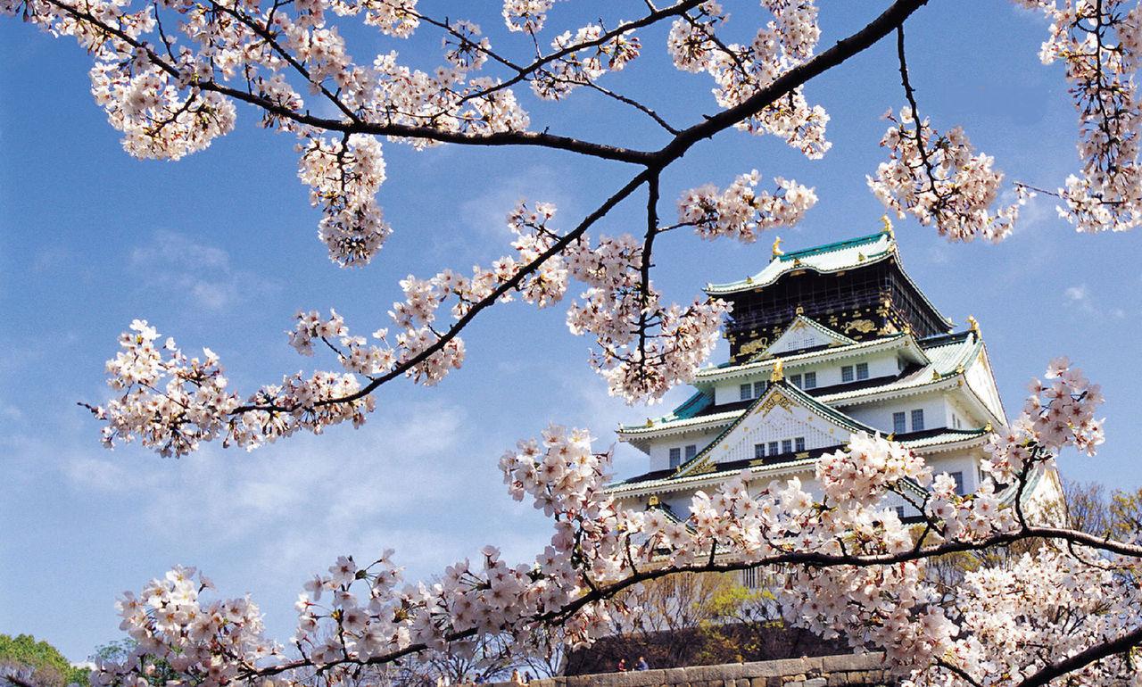 【春节】日本全景双飞7日跟团游<【轻奢格调 】东京特别安排一天自由活动  (东阪) A55>