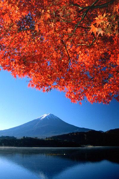 【皇冠日本】日本双飞7日跟团游